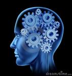triathlon intelligence